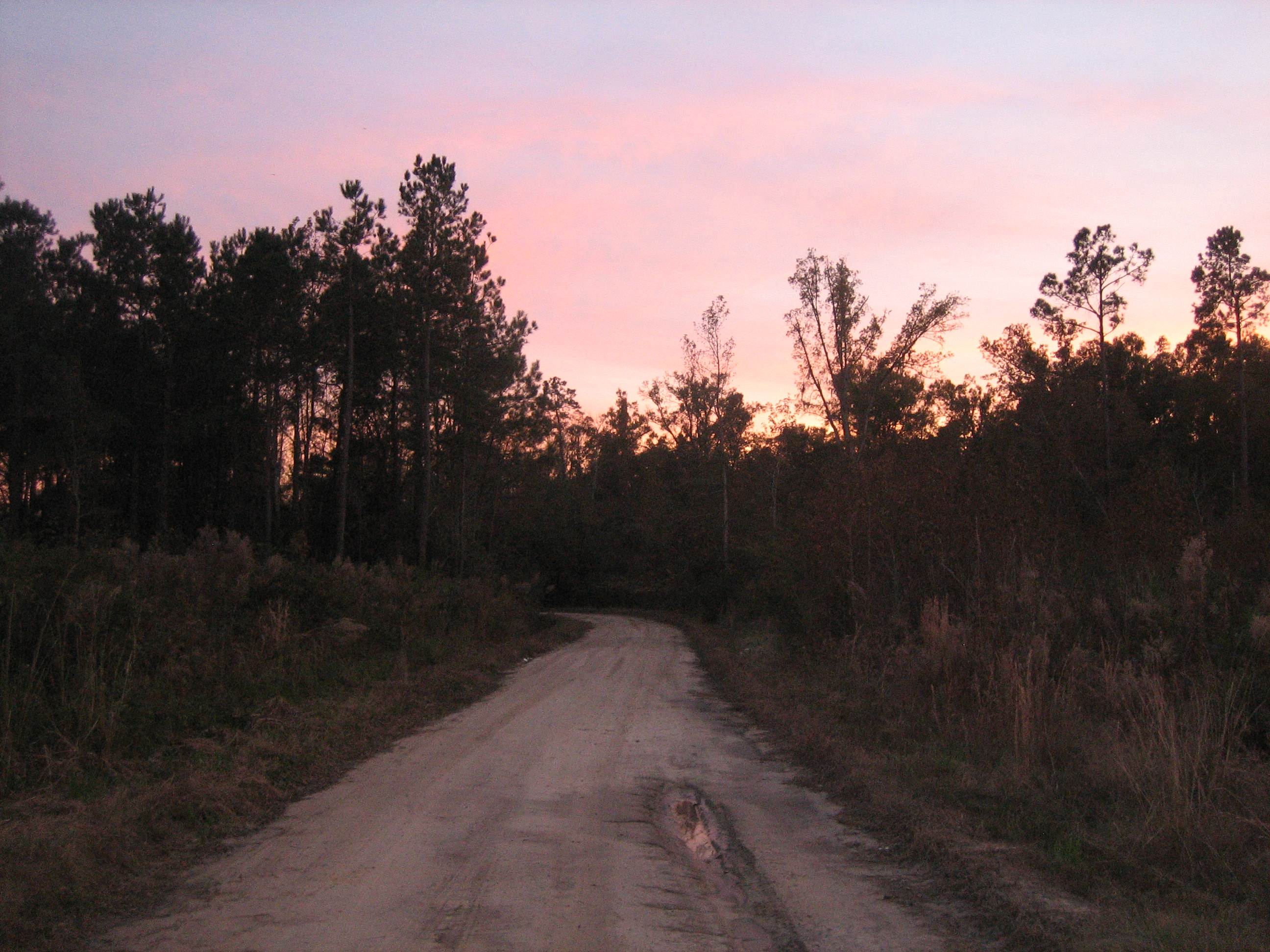 Additional Photos 12 Acres RAW LAND on